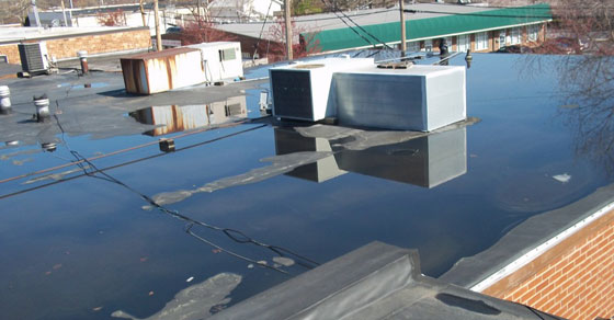 What Happens If Your Roof Floods